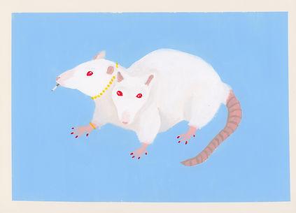 Rats__BAJA.jpg