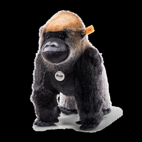 Boogie Gorilla 062216