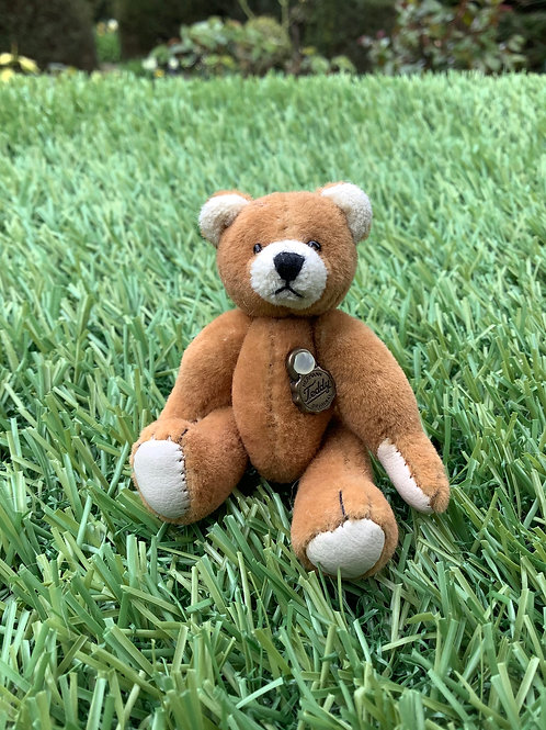 Mini Teddy Brown
