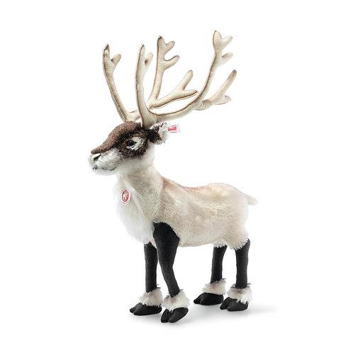 Reindeer Erik-standing 006074