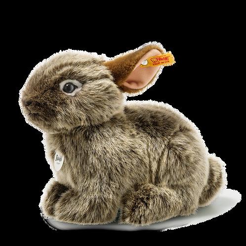 Vula Volcano Rabbit 024368