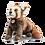 Thumbnail: Bendi Red Panda 024443
