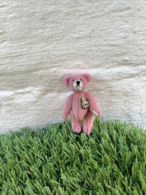 Mini Teddy Pink