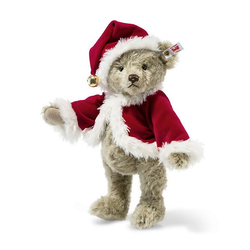 Christmas Teddy 006326