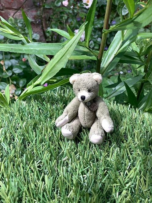 Mini Teddy Pale Green 154129