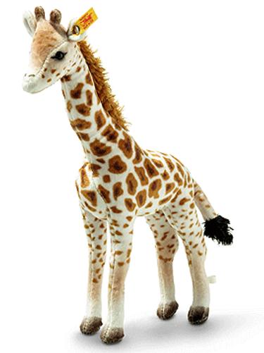 Magda Masai Giraffe 024412