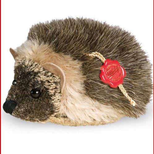 Hedgehog 15627