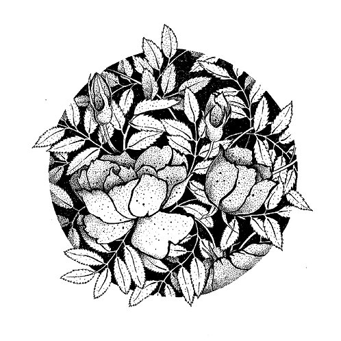 Roses and Leaves Circle (unframed)