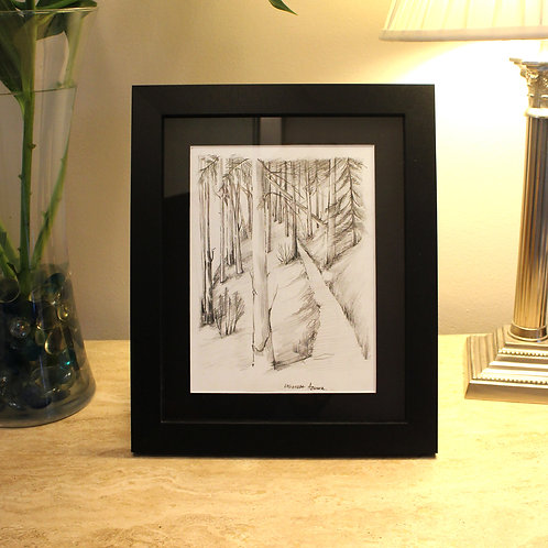 'Walk in the Woods' Framed pencil drawing