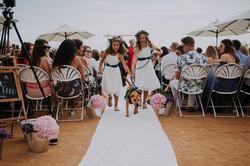 Wedding_00000366
