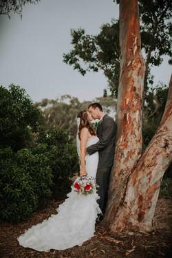 Wedding_00000491