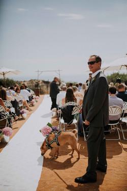 Wedding_00000261