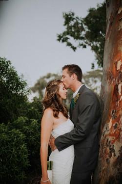Wedding_00000492