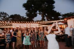 Wedding_00000872