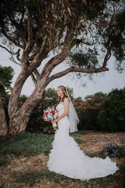 Wedding_00000475