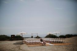 Wedding_00000242