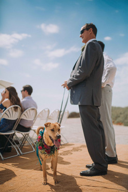 Wedding_00000262