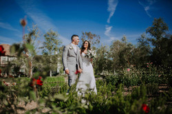 Wedding_00000140