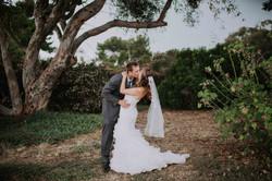 Wedding_00000464