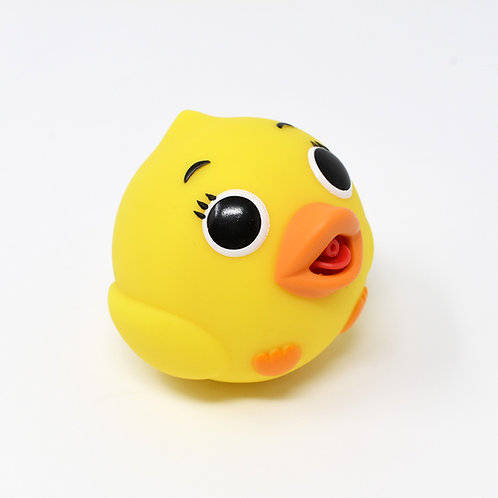 SQUIRBBLE DUCK
