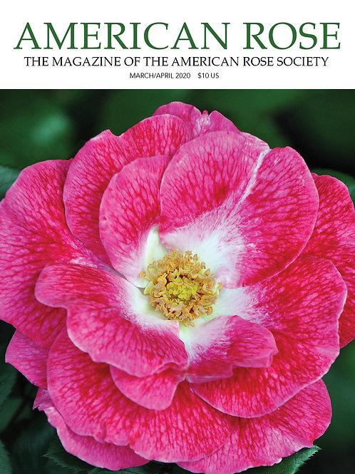 Mar/Apr 2020 American Rose