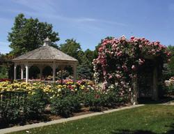 David Dawn Memorial Garden
