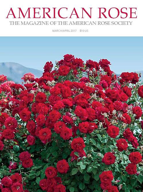 2017 March/April American Rose