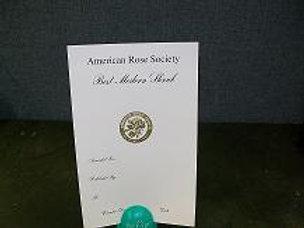 Modern Shrub Certificate