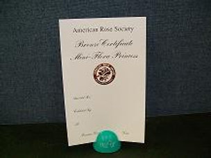 Miniflora Horticulture Certificate Bronze