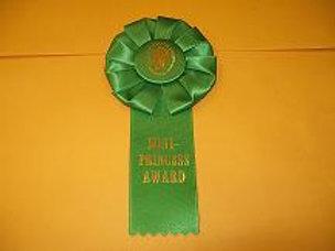Mini Princess Award Rosette - Small