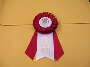 Mini Artists Award Rosette - Small