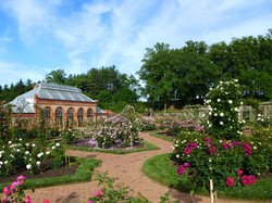 Novice Class 11-9 - First Place -Biltmore Gardens - Lynn Hunt
