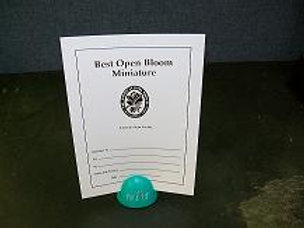Miniature Open Bloom