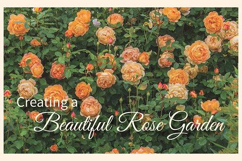 Creating a Beautiful Rose Garden