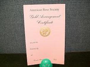 Arrangement Certificate Gold