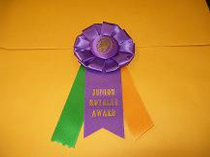 Junior Royalty Award Rosette - Small