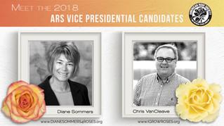 2018 Triennial Election: Vice President Q&A