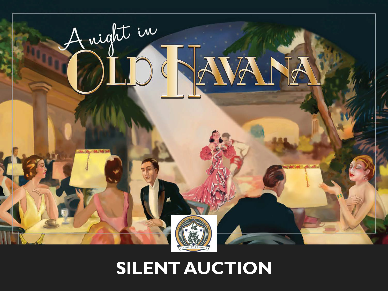 2018 SILENT AUCTION PRESENTATION_Page_01