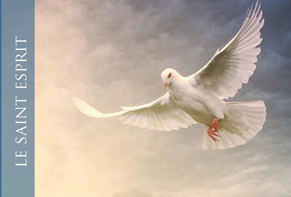Le Saint Esprit - Extraits des Messages de la Vraie Vie en Dieu - vf