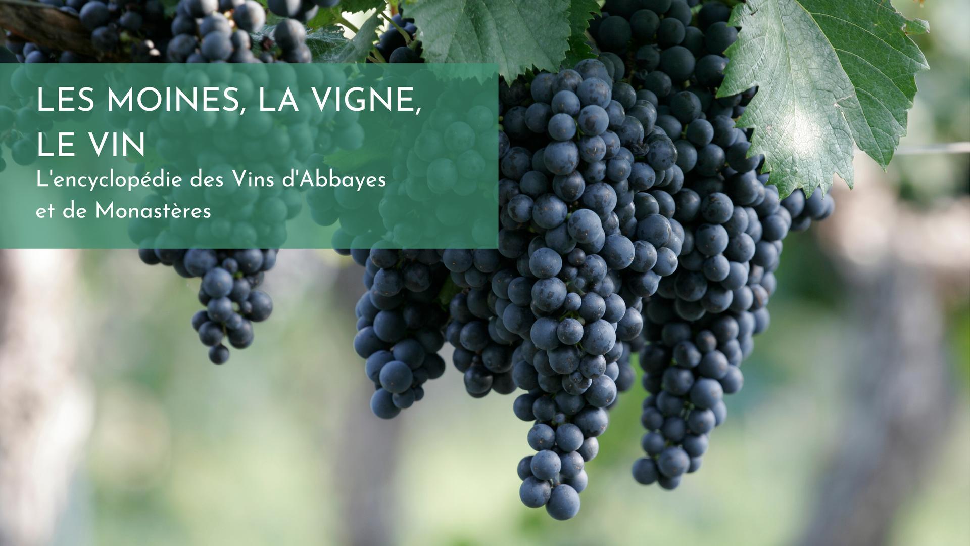 Les moines, la vigne, le vin.png