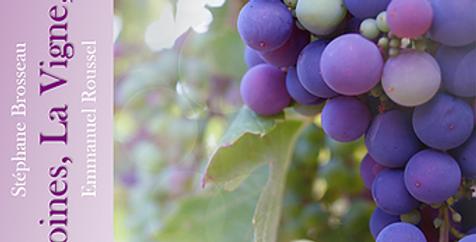 Les Moines, la Vigne, le Vin