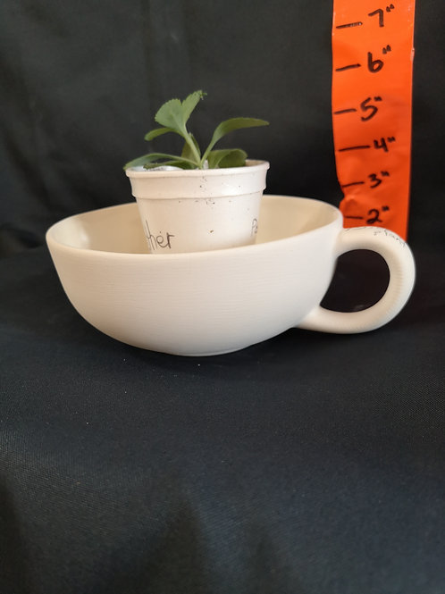 Teacup Planter: Medium