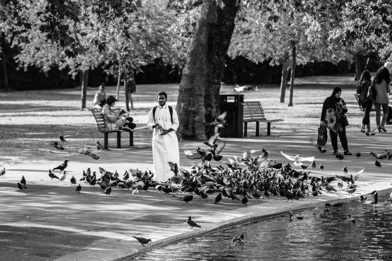 Ele e os pombos_Londres