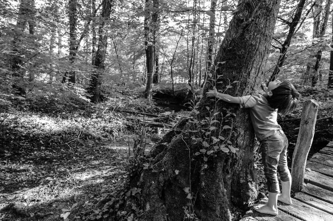 Abraçando a natureza_Genebra