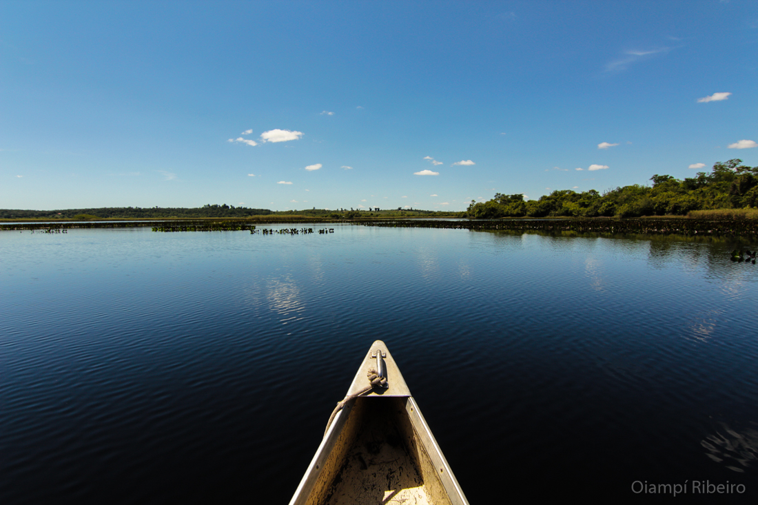 Pantanal Baiano_Marimbus