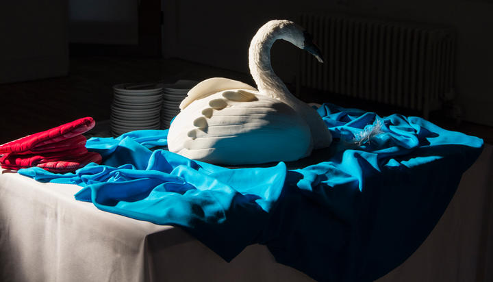 How to bake a swan (2018)