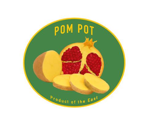 POM POT (2017)
