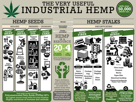Hemp Renewable Resources, Our New Frontier