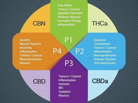 Cannabinoids are pharmaceutically legal in North Carolina