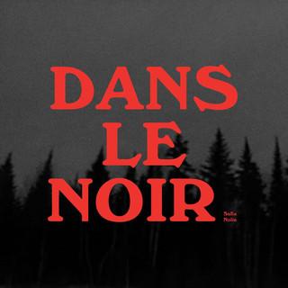 """""""dans le noir"""" LP (2018)"""